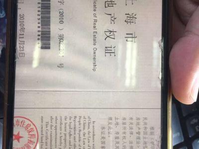 海上海新城